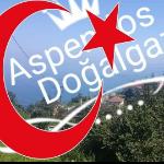 ASPENDOS MÜHENDİSLİK DOĞALGAZ Fotoğrafı